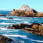 capepoint-photos