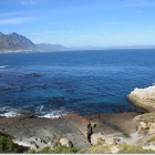 hermanus5fotos