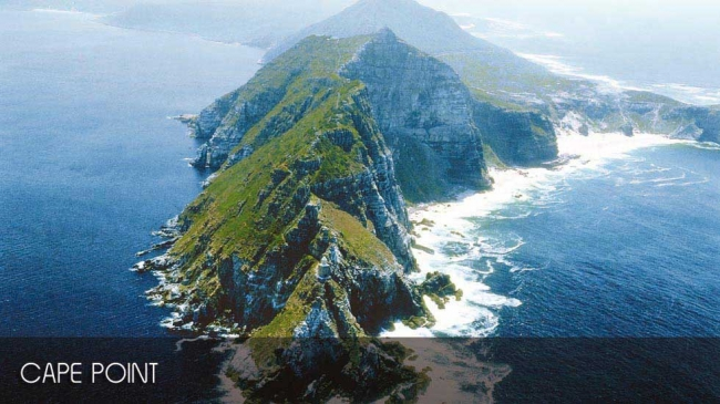 Cape Point Touren